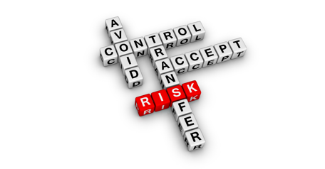 Develop plans to minimize and mitigate the risks